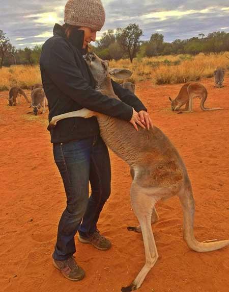 kangaroo_2